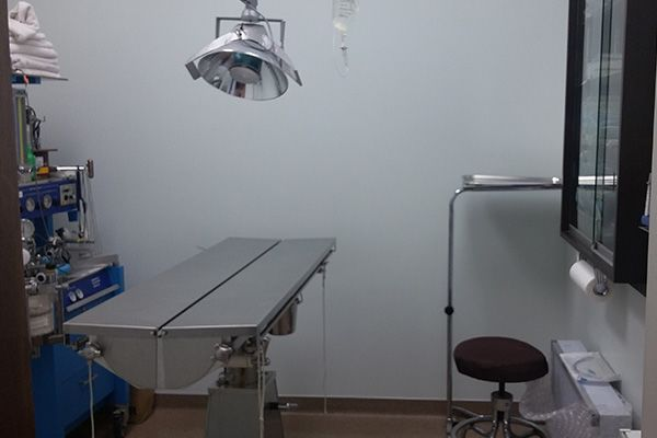 The surgery room